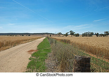 agriculture - a fence line between 2 cereal crops