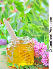 glass jar full of honey and stick with acacia pink and white flowers