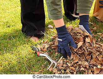 cleaning up leaves in the yard