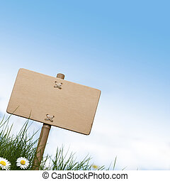 blank wooden sign and green grass with daisies flowers, blue sky and room for text at the top