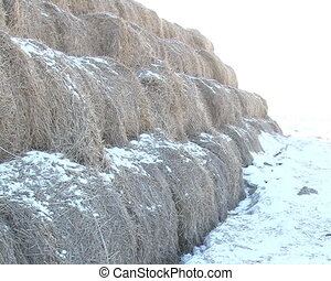 rolled straw stack snow