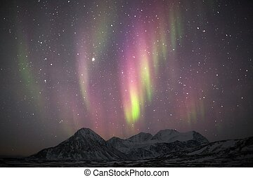 Northern Lights - Arctic, Svalbard - Natural phenomenon of...