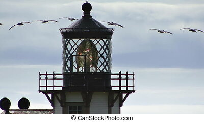 Lighthouse Pelican Flyby - A squadron of pelicans flies in...