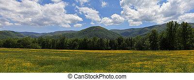 panorama, montagne