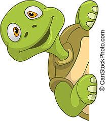 Images et photos de tortue marche 58 images et - Image tortue rigolote ...