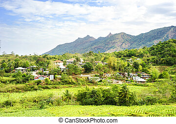 Agriculture in Philippines - Philippines mountain village...