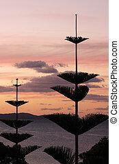 Daytime - Sunrise and Sunset