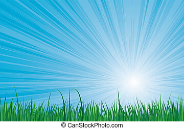 sunburst green grass - Sunburst blue sky green grass vector...