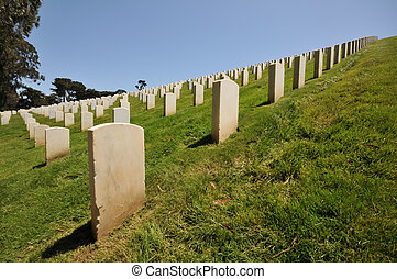 Rows of headstones in a cemetery
