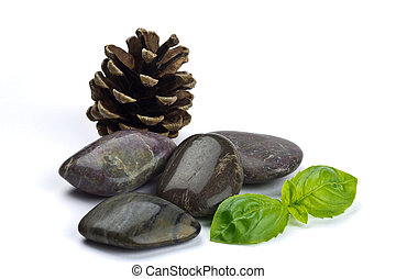 Dark Shiny Pebbles with a cone and leaves