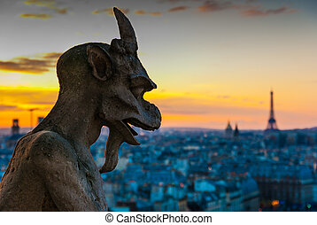 Gargoyle Staring over Paris - Gargoyle looking at the...