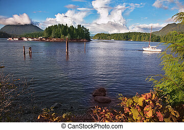 Morning wind on island Vancouver - Easy morning wind in a...