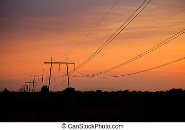 Electric line in fields on sunset