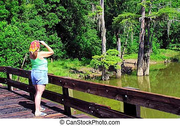 Bird watching - A woman bird watching from a bridge at...