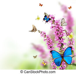 Butterflies in meadow - Beautiful flower background with...