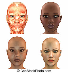 Female Face Pack - Illustration of a pack of four 4...