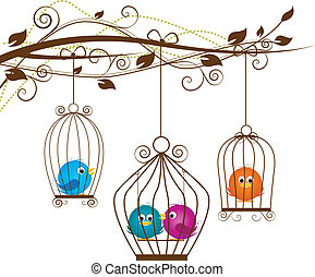 birds - colorful birds in a cage on a white background