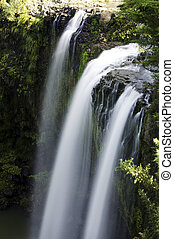 Nature - Waterfall - Waterfall with water flowing around
