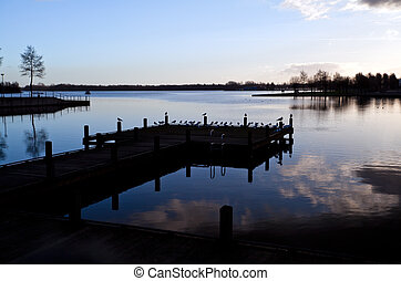 silhouette of pier with birds
