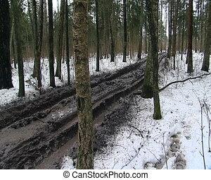 muddy swamp road