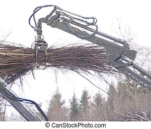 crane unload tree branch