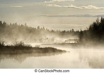 Early morning fog - Early morning sunrise with mist