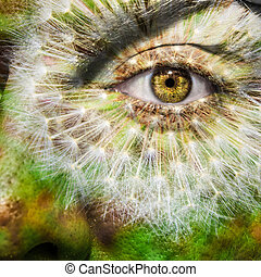 Face with brown eye and painted dandelion