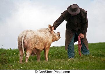 Farmer patting his breeding boar