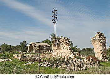 Ruines at Ramat Hanadiv, Israel