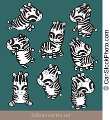 Cute little zebra