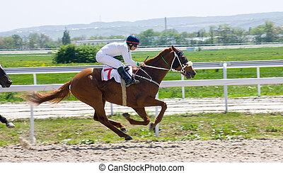 Horse racing - Action shot of jockeys in horse race.
