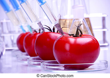 Dna research - Genetically modified fruits and vegetables