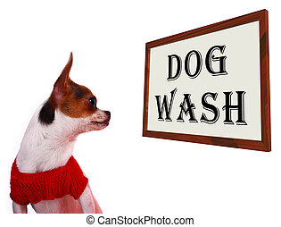 Dog Wash Sign Showing Canine Grooming Washing Or Shampoo -...