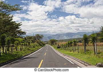 Road in the Andes in Ecuador