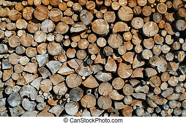 cut tree trunks forming a huge outdoor Woodshed