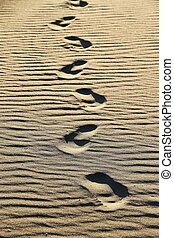 Foot step - footsteps on the beach