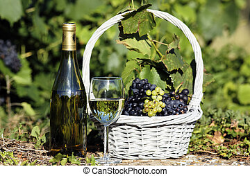white wine spirit - glass and bottle of white wine with...