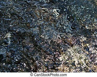 Murmur of the brook - The water in a small stream is very...