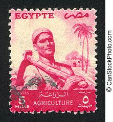 Farmer - EGYPT - CIRCA 1953: stamp printed by Egypt, shows...