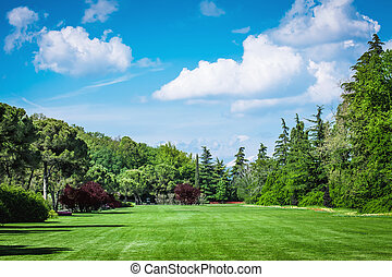 Golf Field - Landscape foto of a Goldfield with trees and...