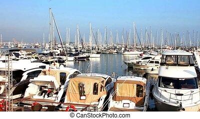 Marina - Luxury yachts in the harbor.