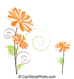 春, カラフルである, デイジー, 花, 白, 背景
