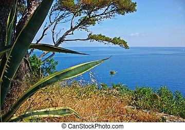 The beach of the island of Elba, Tuscany, Italy