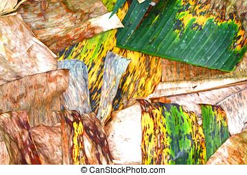 banana leaves - close up of colorful dry banana...