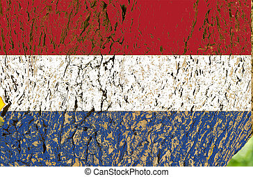 Holland flag background of tree - texture