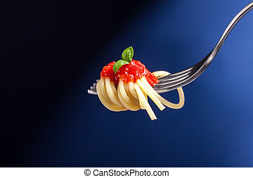 Spaghetti with Tomato Sauce wrapped on a fork - beautiful...