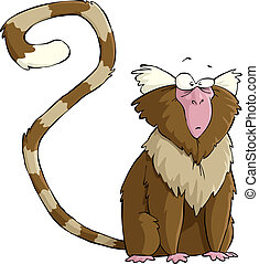 Marmoset - Monkey on a white background vector illustration