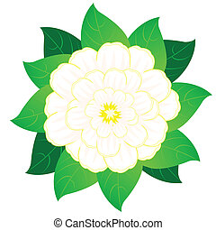 Beautiful vector flower with sheet