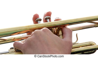 Musician hand plays on trumpet