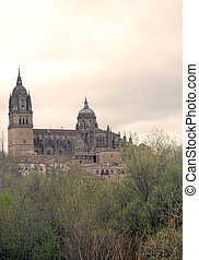 Cathedral of Salamanca - View of the Cathedral of Salamanca...